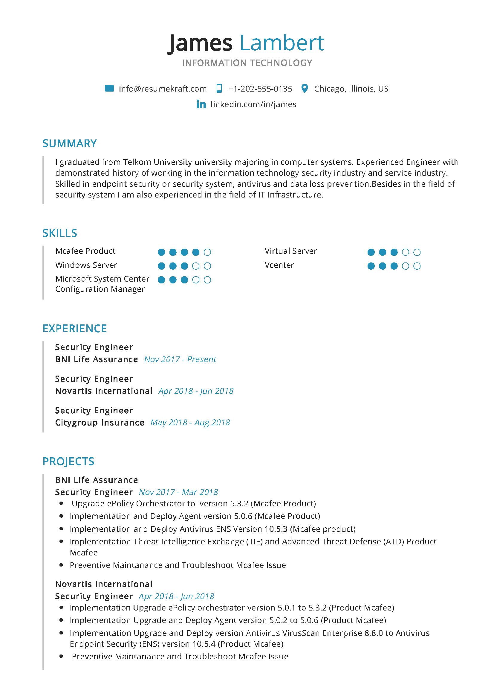 Information Technology Resume Sample Information Technology Professional Resume Samples Resume