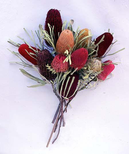 Australian Dried Flowers Banksias Tiny Flowers Wedding Flowers Planting Flowers