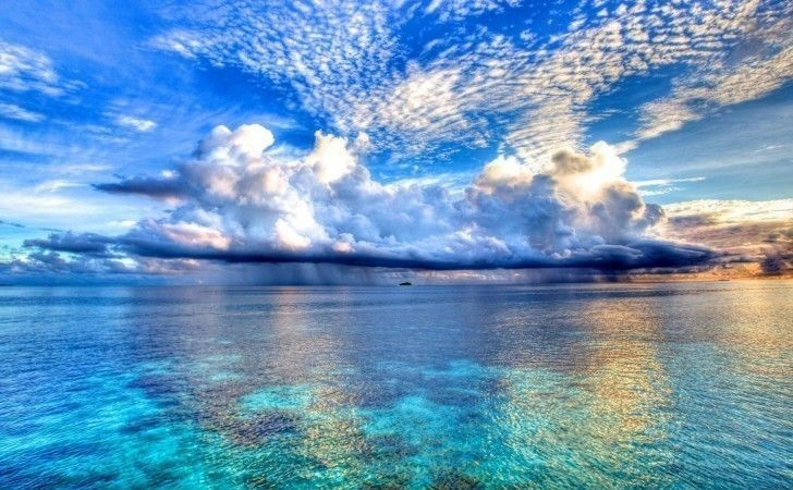 saiba-o-que-e-economia-azul-imitando-a-natureza-blog-usenatureza