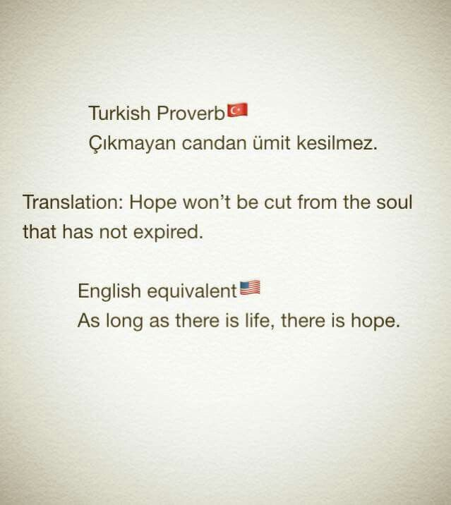 A Turkish Proverb Turkish Quotes Bilingual Quotes Beautiful Mind Quotes