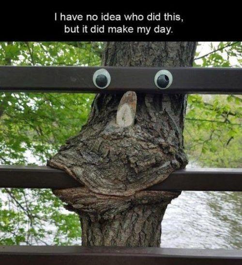 24 lol Hilarious - #Hilarious #lol #memes