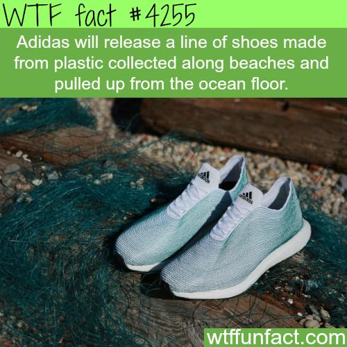 kunststof Adidas gemaakt de schoenen oceaanbodem van Wtf verzameld TTRFtwvqx