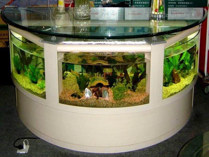 Unique Ideas For A House Creative Home Bar Table Aquarium Decoration Ideas Pictures