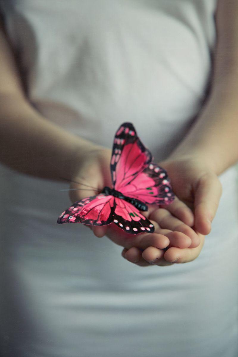 Theme: Butterfly  Photo Donatella Loi