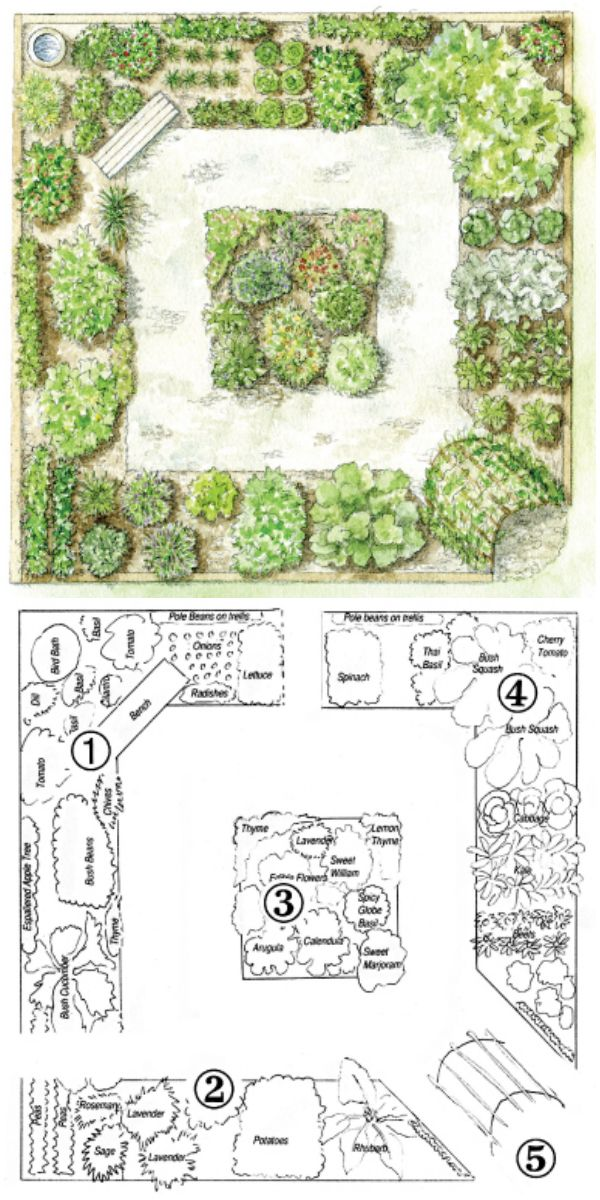 Step By Step Your Garden Grows FiveYear Kitchen Garden Design Plan – Kitchen Garden Plans