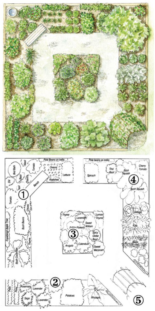 step by step your garden grows five year kitchen garden design plan garden 3. Black Bedroom Furniture Sets. Home Design Ideas