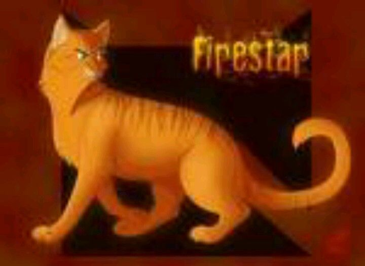 Firestar With Images Warrior Cat