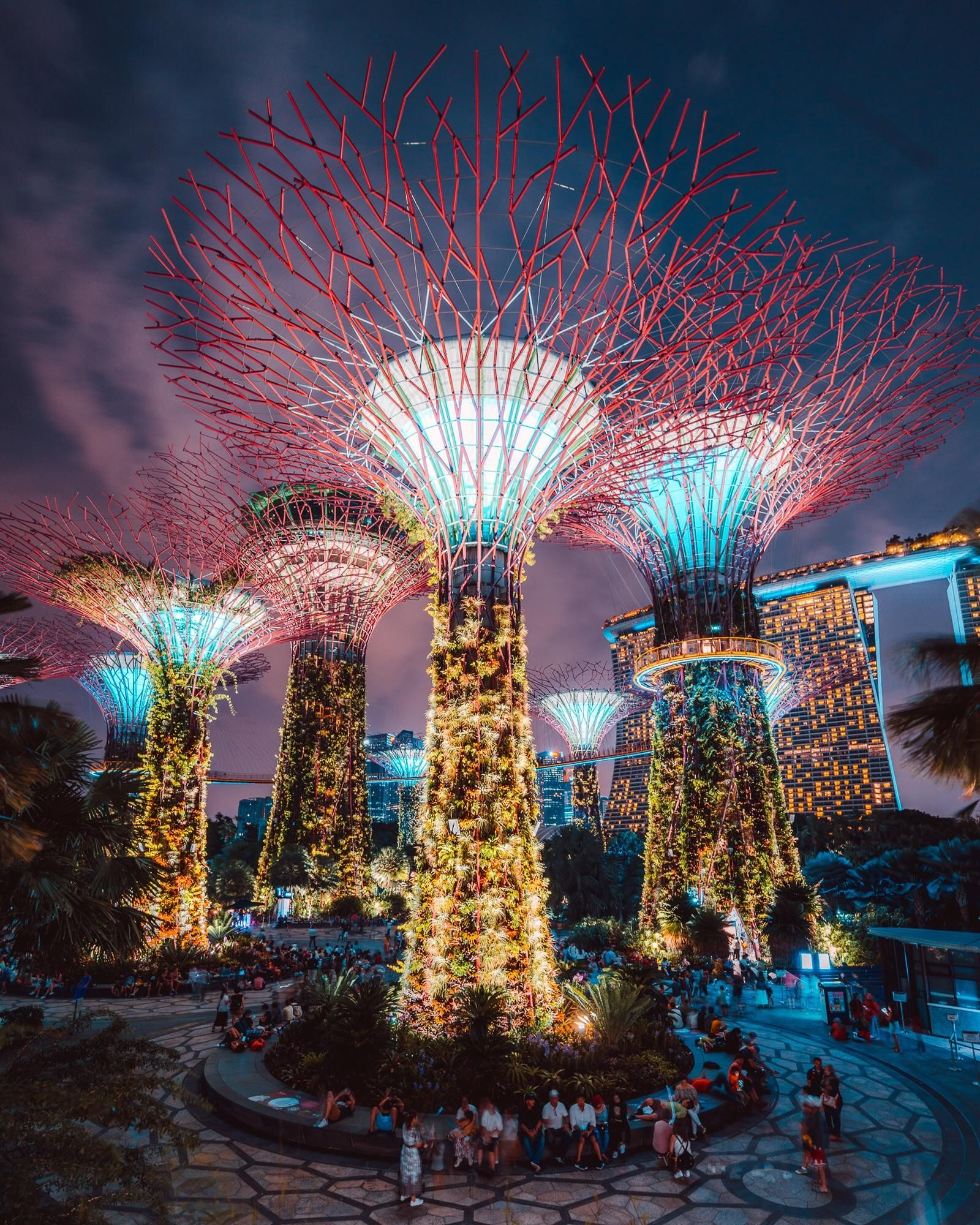 Singapores Super Trees Gardens by the bay, Singapore
