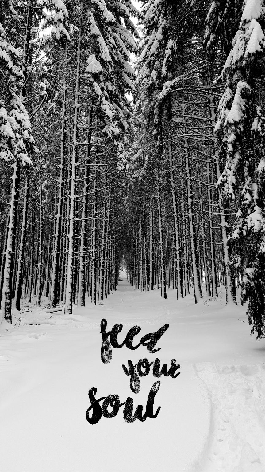 Feed your soul nature quotes forest black white photography