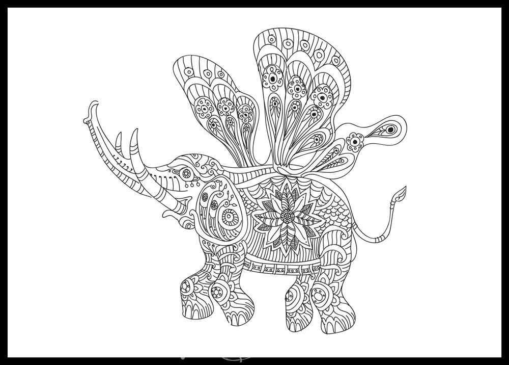 Detailed Line Drawings Of Animals : Animal wildlife coloring pages colouring adult detailed