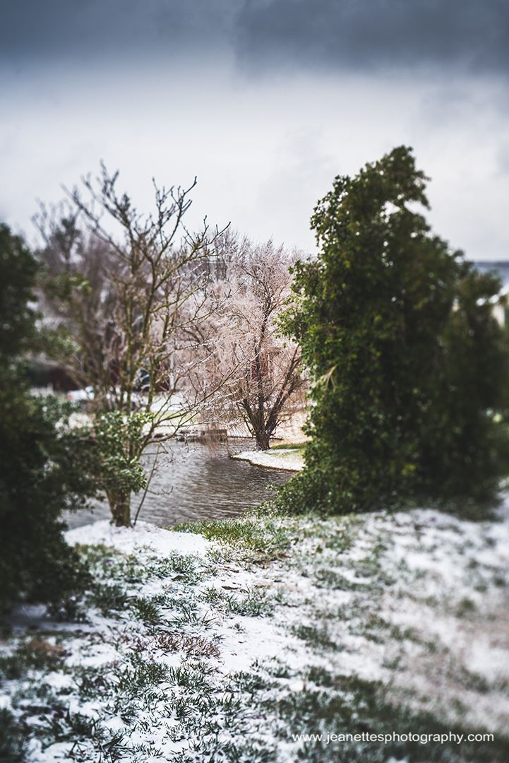 A Serene Winters View. Happy hump day everyone! Let's take a walk along the park today and continue this week's post highlighting last weekend's ice storm. This is the view from another pond on the other side of the neighborhood. I initially climb the berm to get a photo of the gazebo when I turned and saw this pretty scene.  Despite the cloudy, snowing and windy morning the view was so pretty and peaceful.