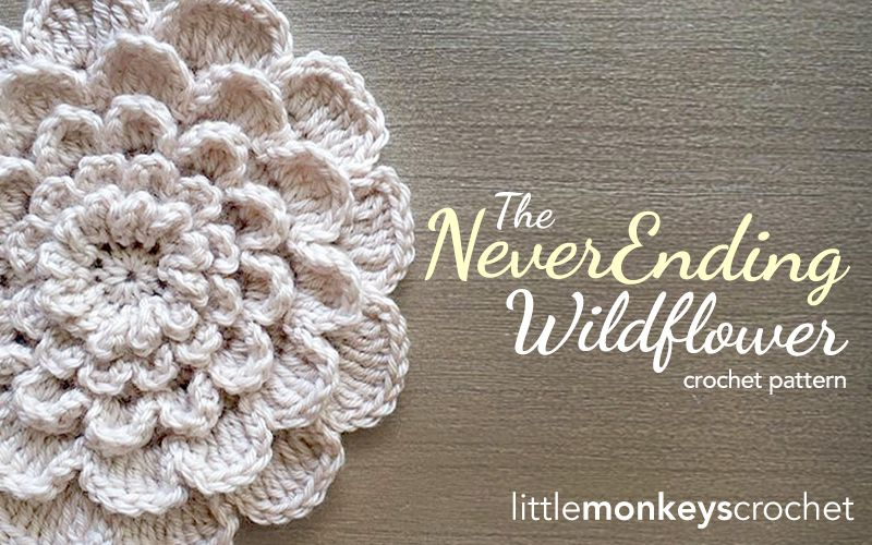 The Never Ending Wildflower 12\