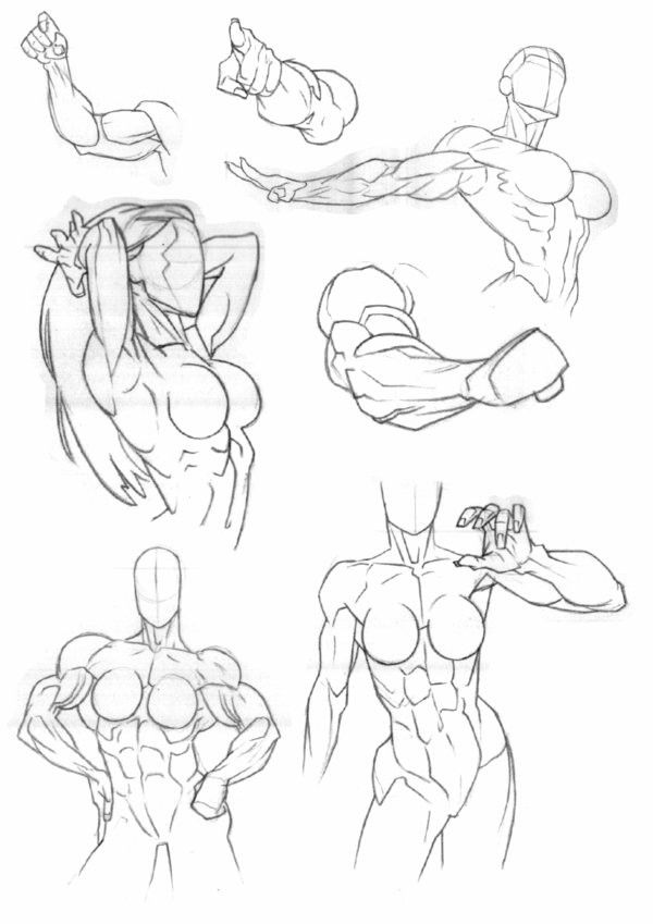 Muscular Woman Drawing : muscular, woman, drawing, Thing, Strong,, Muscular, Women., Sketch, Book,, Reference, Poses,, Female, Drawing