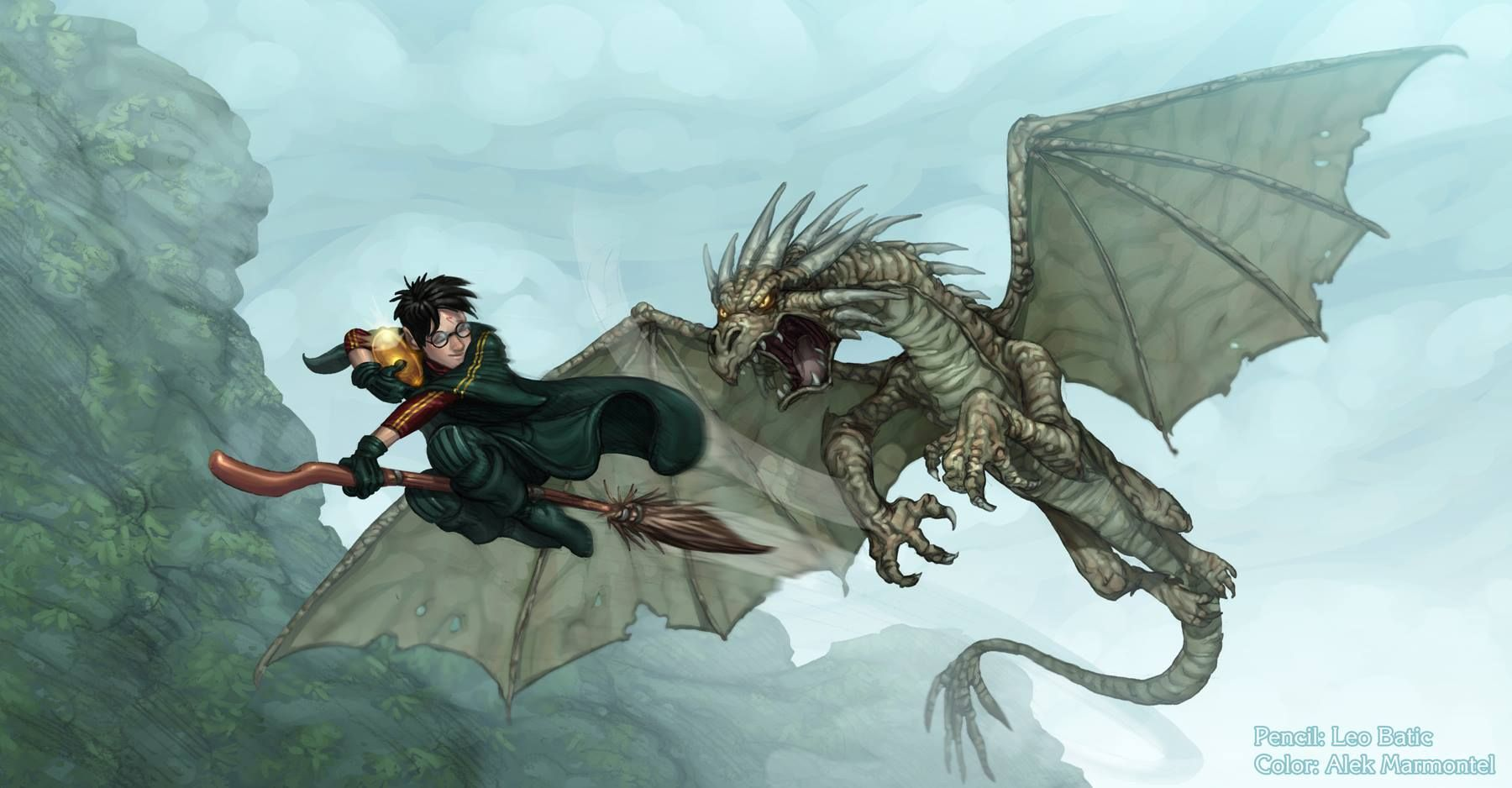 Harry fighting his dragon in the Goblet of Fire | Harry