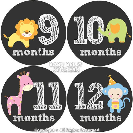 Baby Month Stickers Monthly Baby Stickers Bodysuit Stickers Monthly Milestone Stickers Baby Monthly Stickers Girls Baby Animals Baby Month Stickers Month Stickers Baby Month By Month