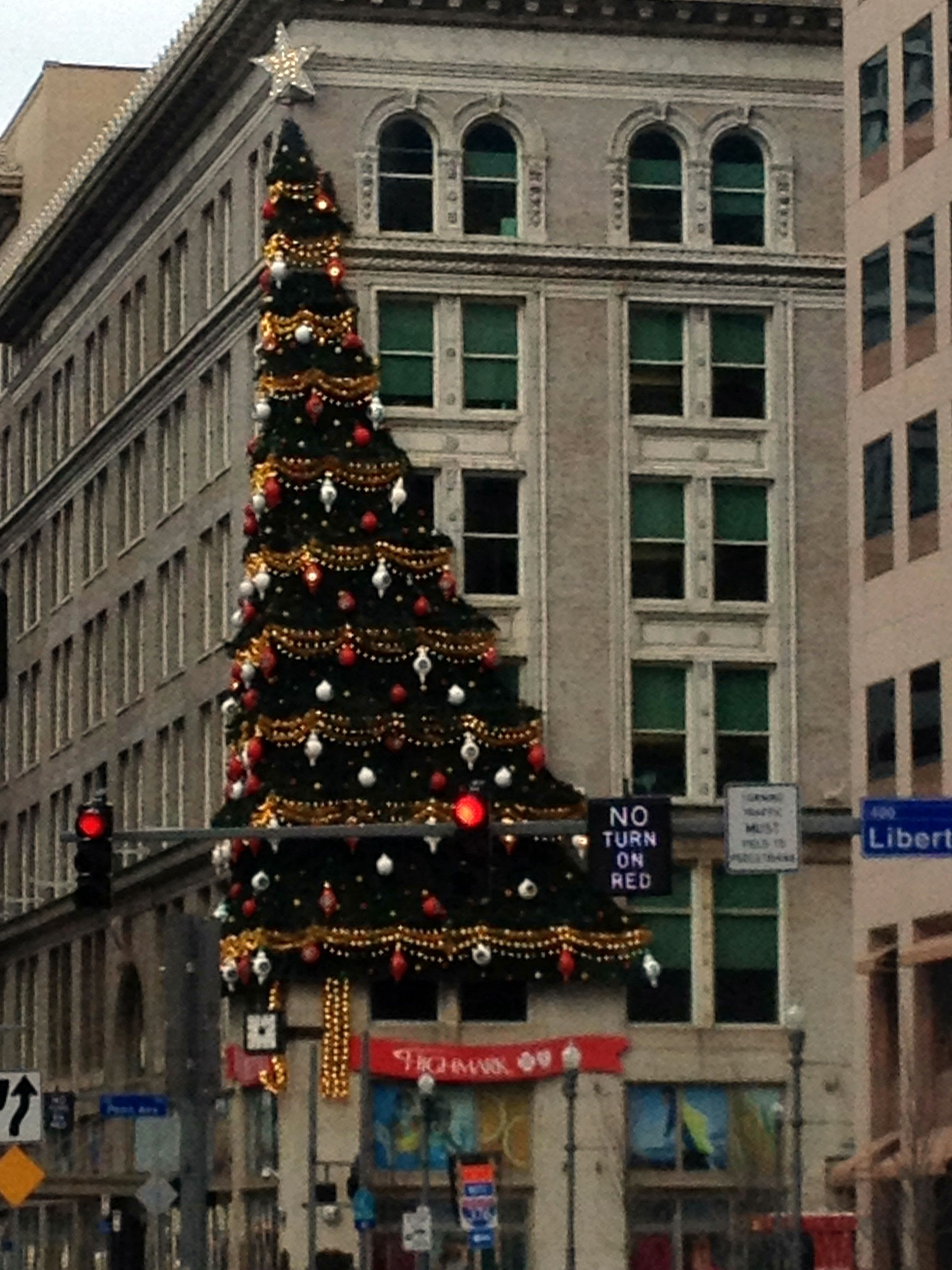 COOL TREE IN DOWN TOWN PITTSBURGH WHICH IS VERY PRETTY AT NIGHT FOR SURE