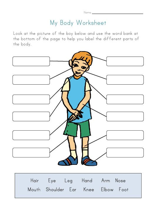 worksheets for kids | Body Parts Worksheet for Kids | science ...