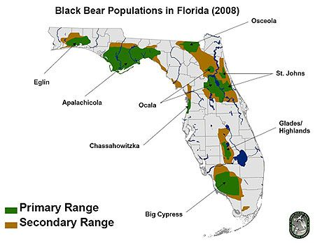 Bear distribution map   Yes, We Have Bears In Florida