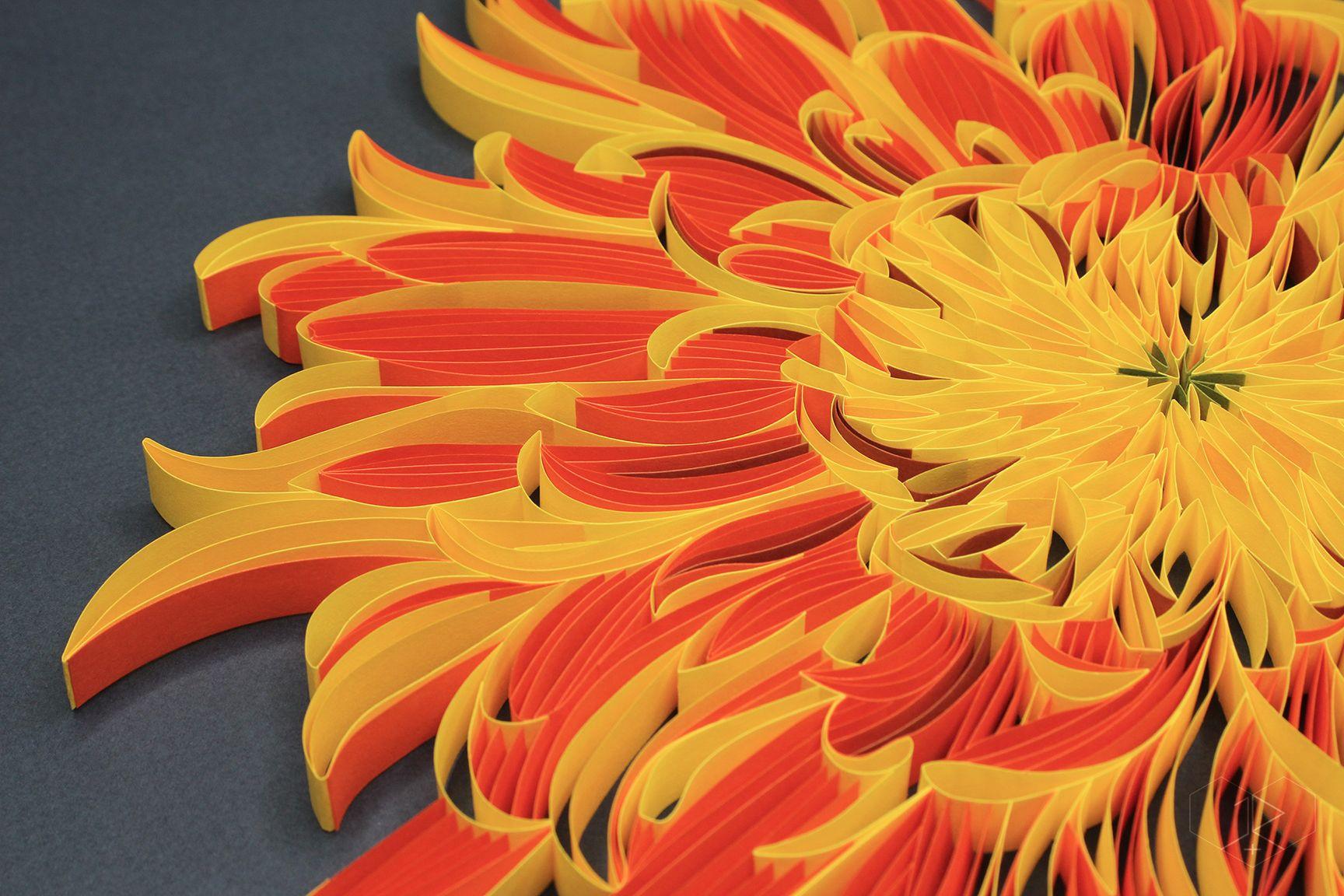 Chrysanthemum Detail Judith Rolfe