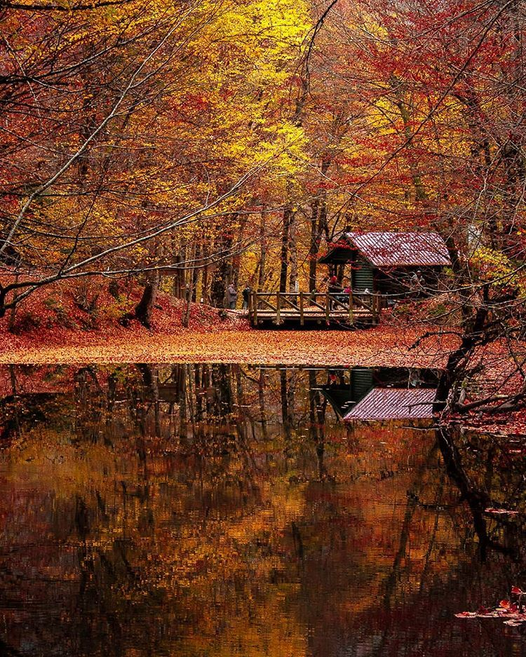 Yedigoller National Park Bolu Turkey National Parks Scenery Sightseeing
