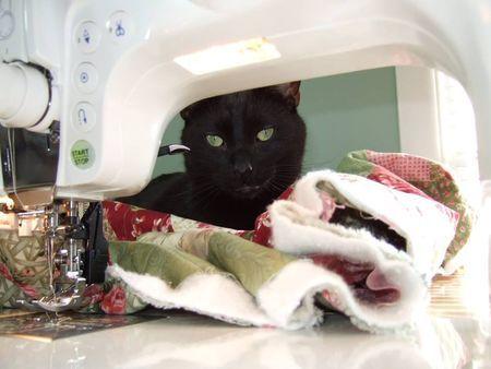"""Cayden"" loves to help quilt."