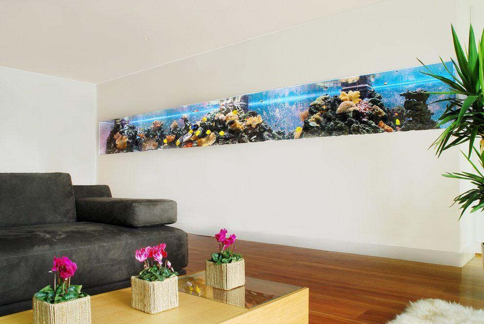 Fish tank wall living room modern with white walls long aquarium ...