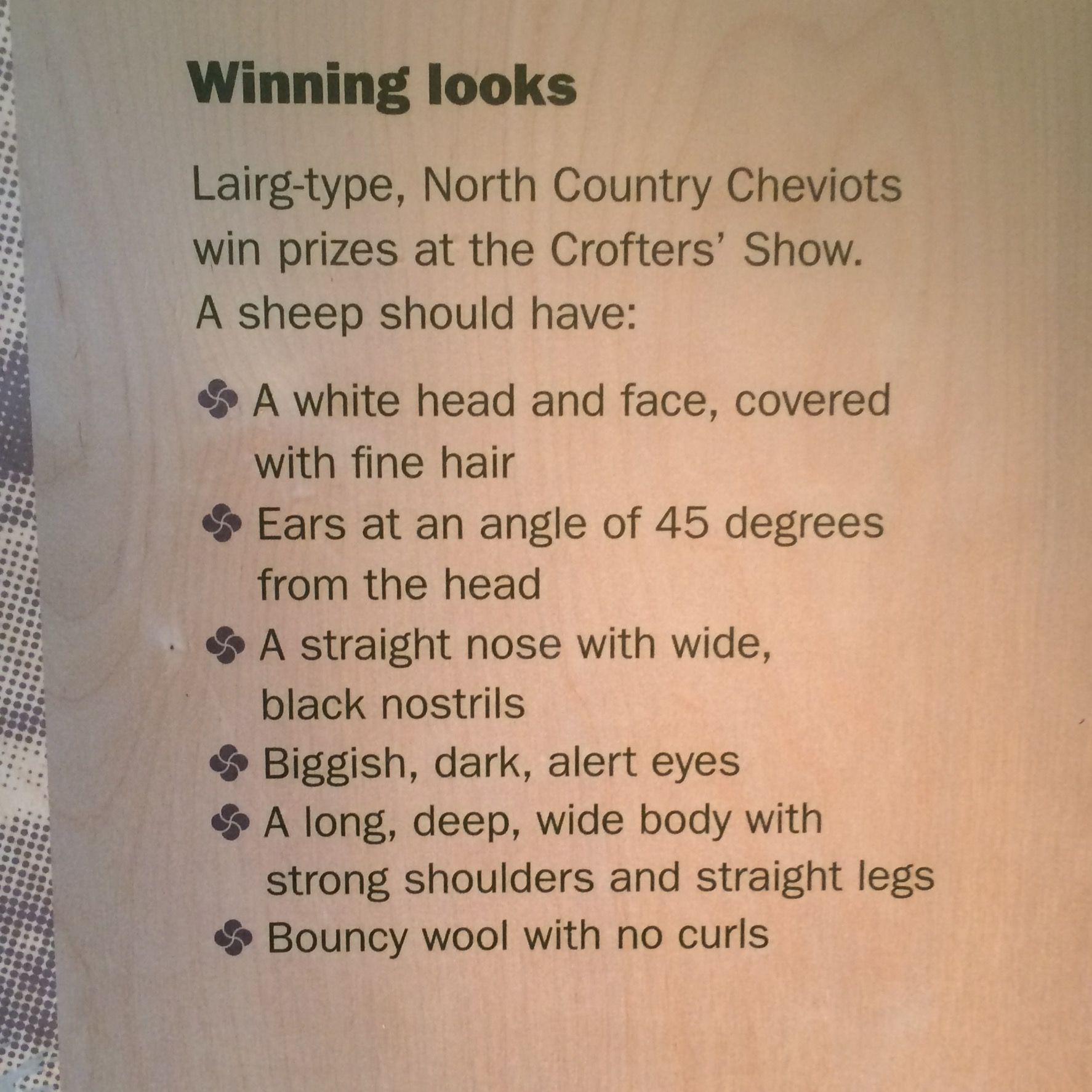 From Lairg's Visitors Centre