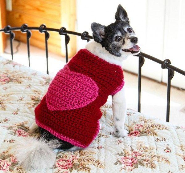 15+ #Crochet Patterns for Animals - Romantic dog sweater crochet ...
