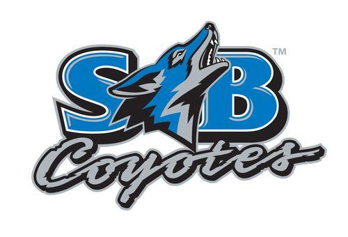 8 Inch Sticker California Cal State University San Bernardino CSUSB Coyotes NCAA Name Logo Vinyl Decal Laptop Water Bottle Car Scrapbook