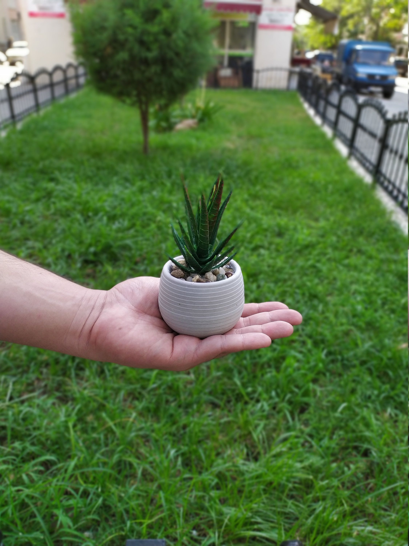Desk planter cement planter concrete cute planter
