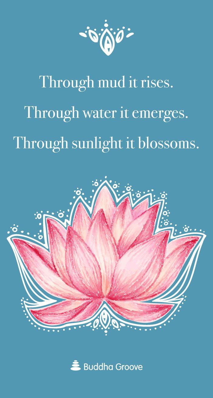 Inspiration From The Lotus Flower Joy And Happiness Pinterest