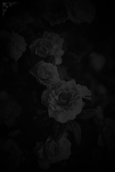 dolly backgrounds black aesthetic