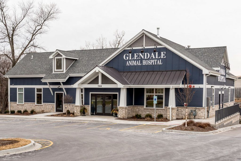 Glendale Animal Hospital Hospital Design Architecture Medical