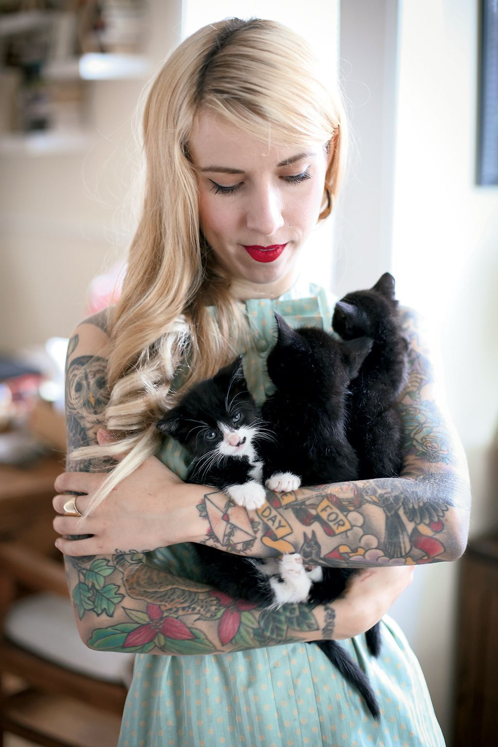 The Kitten Lady S Instagram Will Lure You In With Cuteness Kitten Cute Cats And Kittens Kittens Cutest