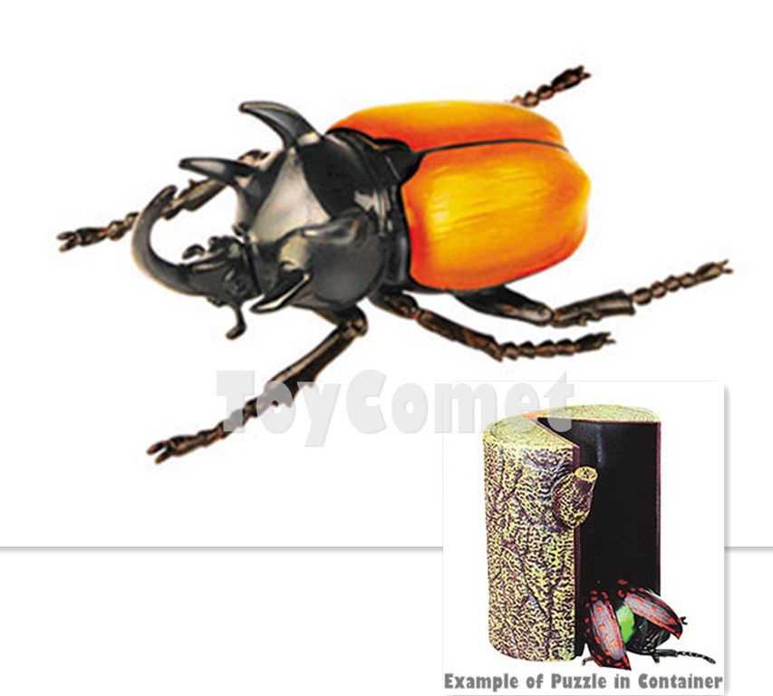 Green Flower Beetle Insect Part I 4D 3D Animal Puzzle Realistic Model Kit Toy