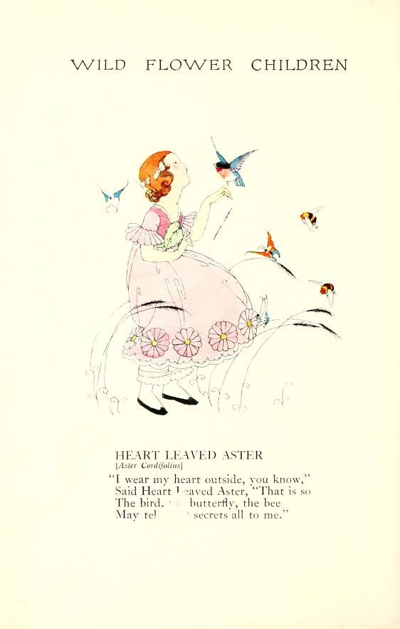 Wild flower children : the little playmates of ...