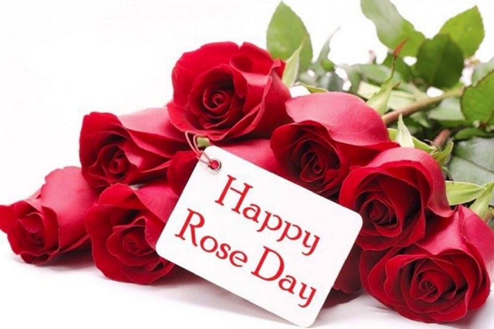 Happy Rose Day Sms 200 Rose Day Massage For You 14 In 2020 Happy Valentines Day Card Rose Day Wallpaper Happy Rose Day Wallpaper