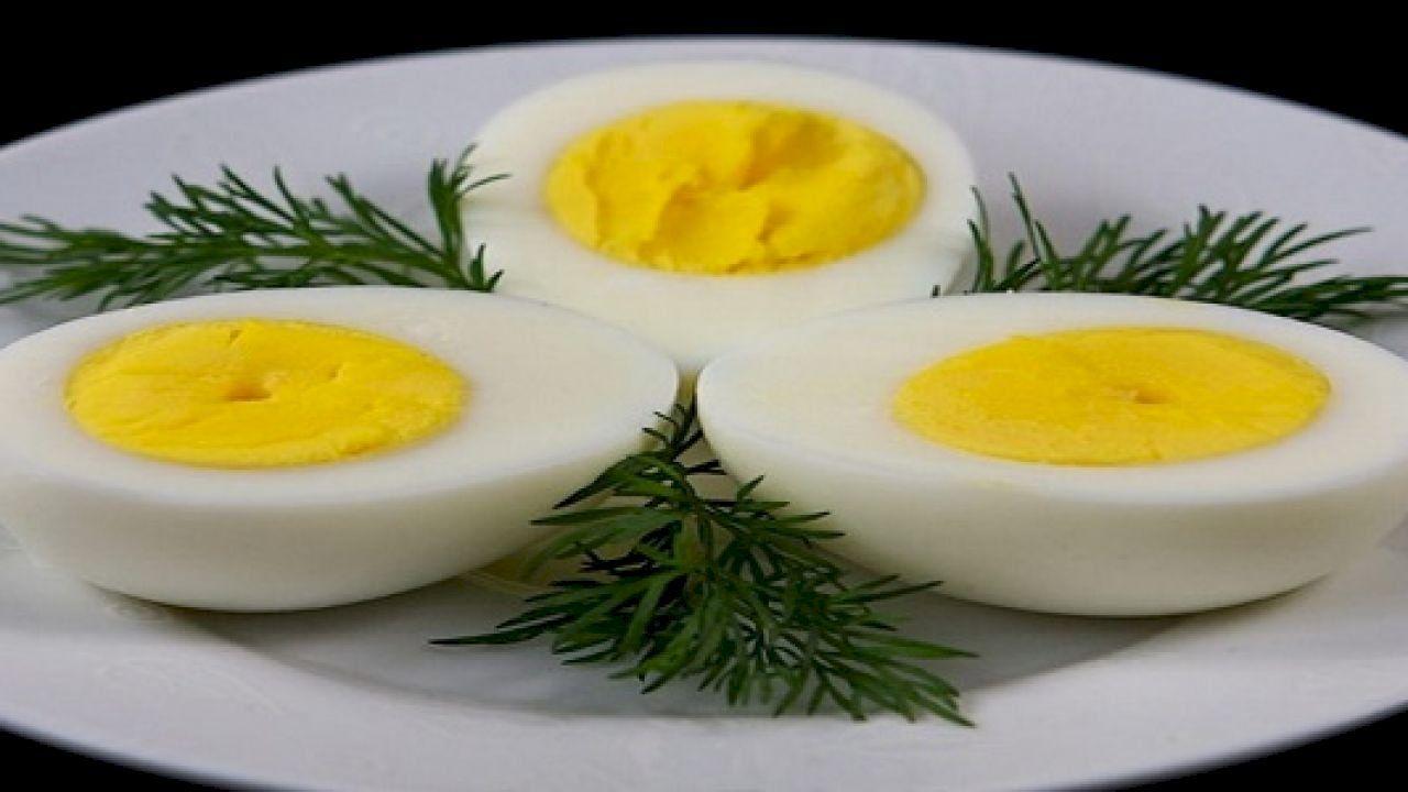 فوائد البيض المسلوق للأطفال Diet Loss Diet Eating Eggs