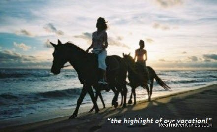 Photo Slideshow Florida Horseback Riding On The Beach Cape San Blas