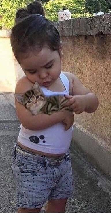 Pin Di La Ginestra Elena Su Bambini Con Animali Gatti E Gattini