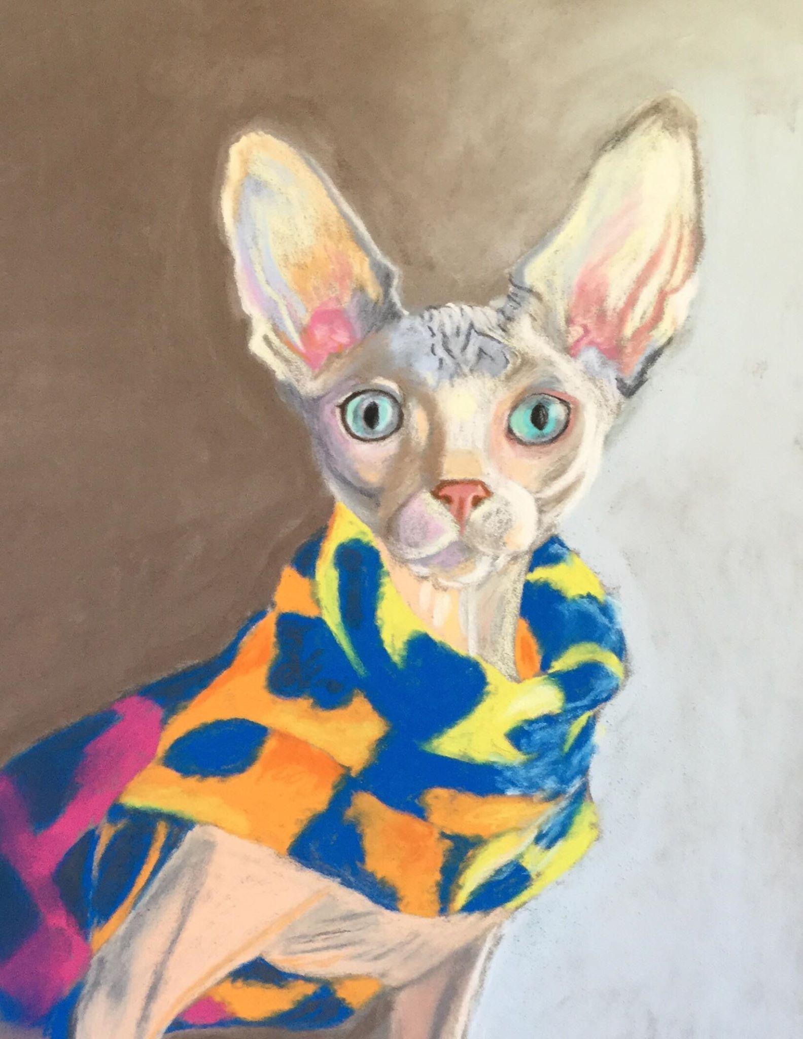 The Friday Art Cat Sphynx In A Multicoloured Jumper Katzenworld In 2020 Feline Pet Sphynx Cats