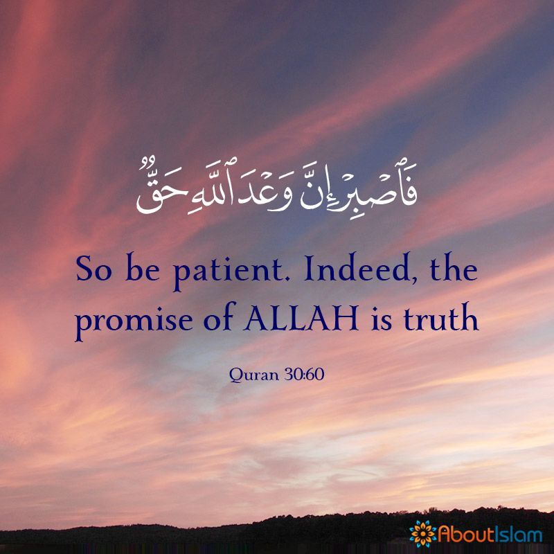 The promise of Allah is the truth! in 2020 | Islamic ...
