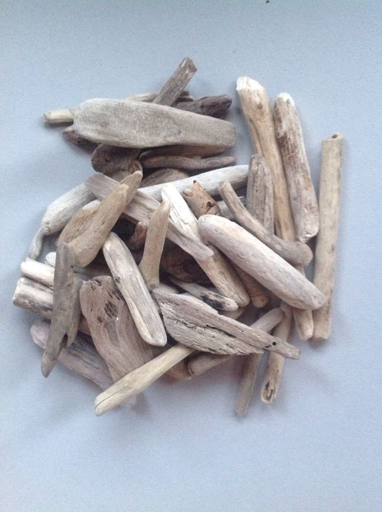 Small Driftwood Piecesscotland Beach Findarts Craftswooddecor In Home Furniture Diy Home Decor Other Home Decor Ebay