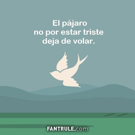 Perfiles Tu fotos bonitas facebook Imagen perfil whatsapp