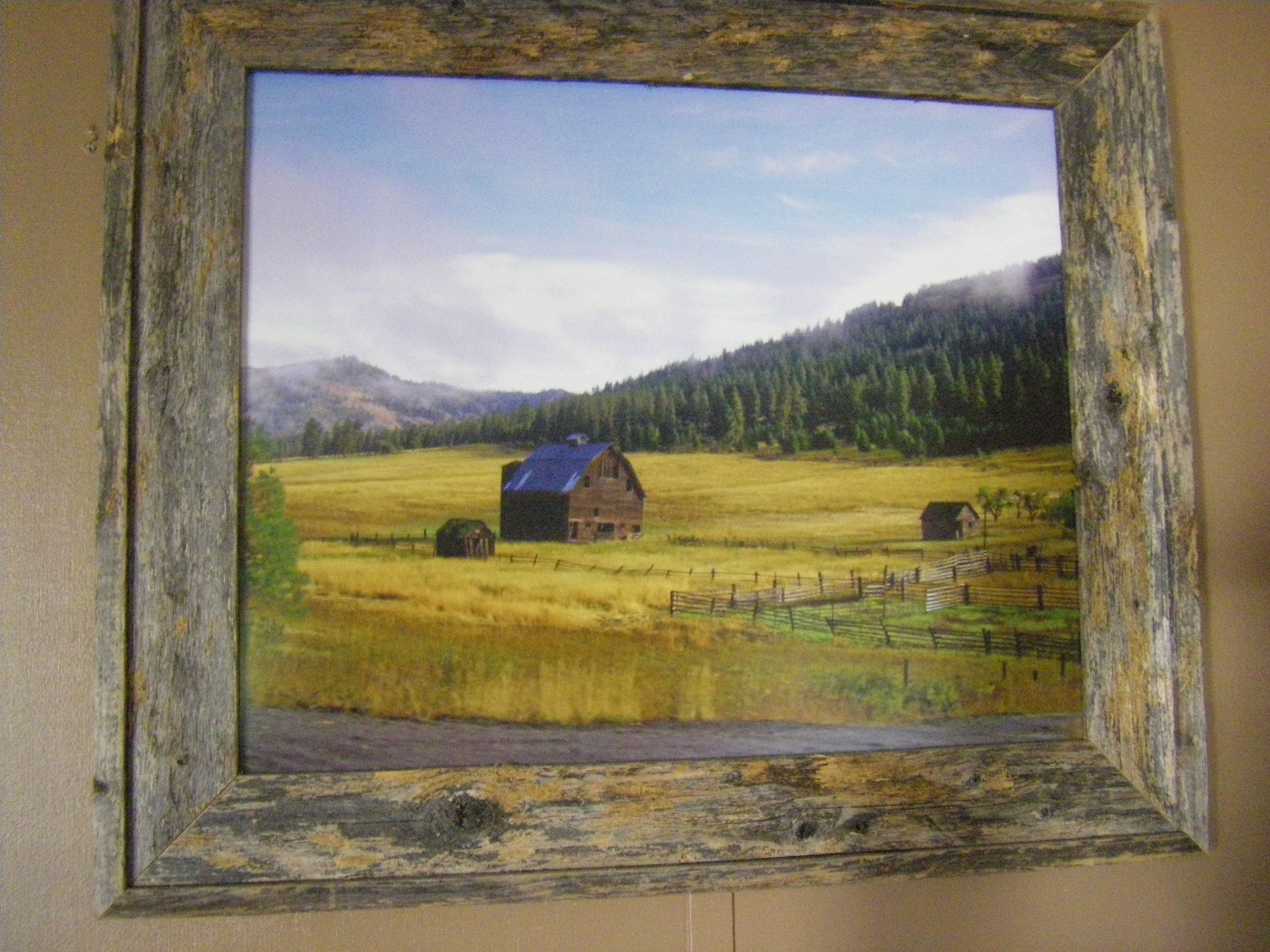 Picture I took on one of our trips, had it enlarged by Walgreens, framed in barnwood....love it