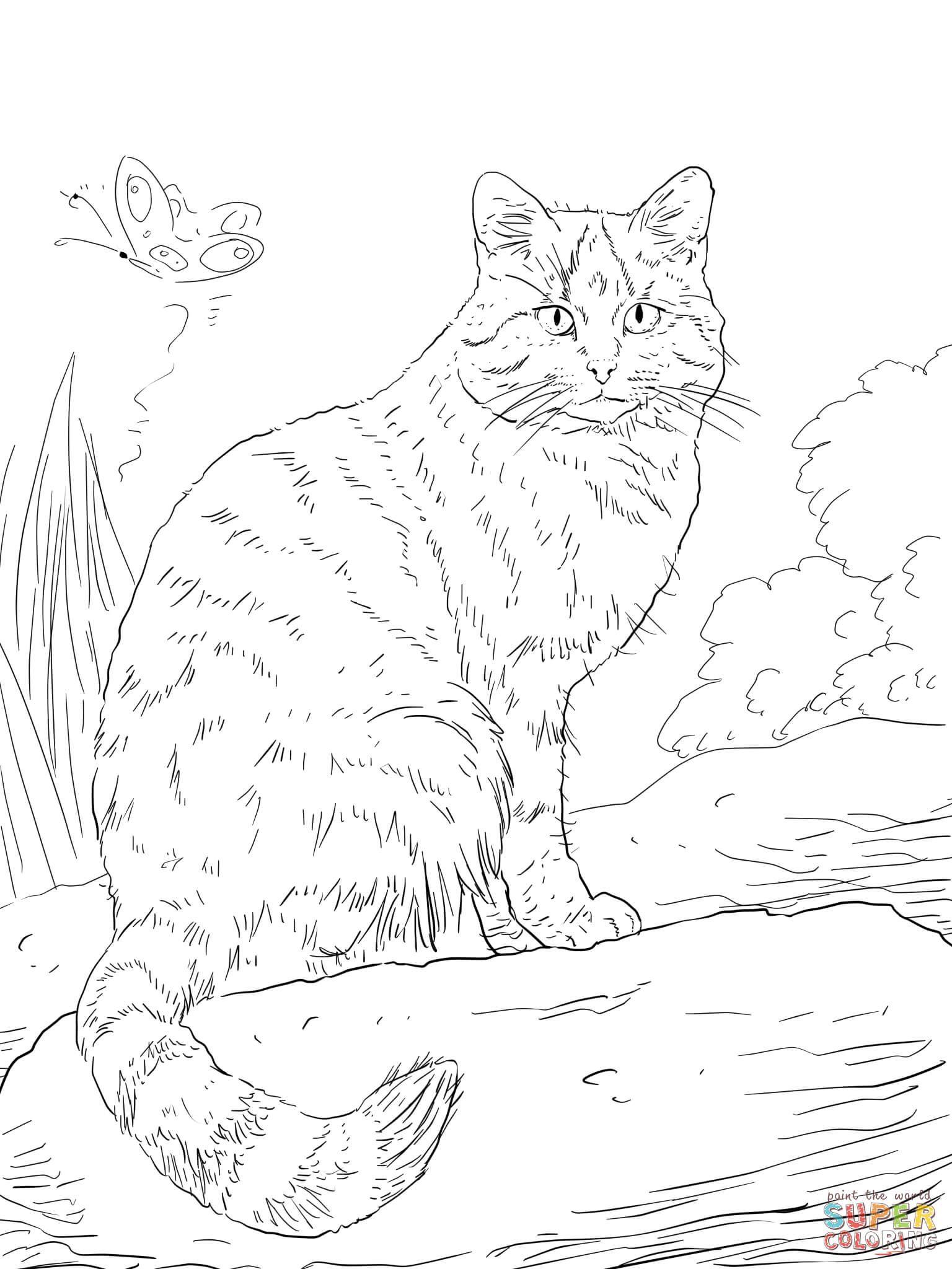 Malvorlage Gestreifte Katze - tiffanylovesbooks