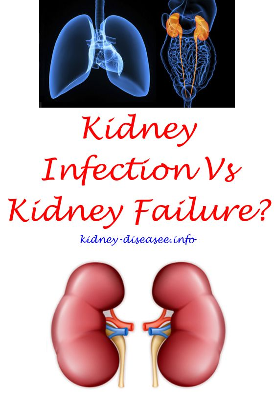 food for kidney disease patients - reversing chronic kidney disease naturally.kidney cleanse cancer 1822103932