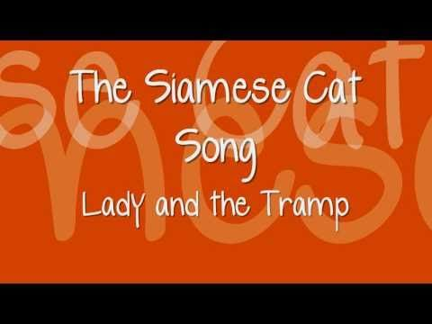 Lady And The Tramp The Siamese Cat Song Lyrics Lady And The Tramp Cat Toilet Training Cats