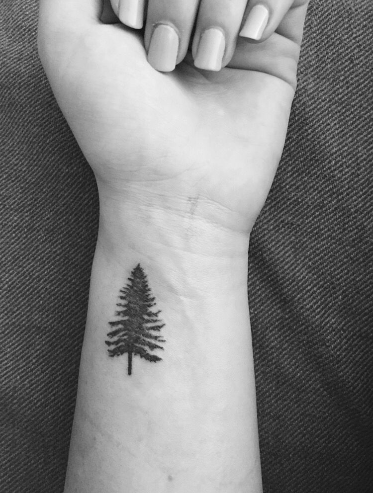 20 fir tree tattoo