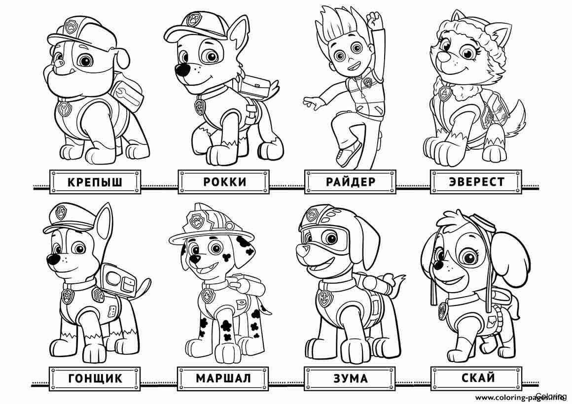 Skye Paw Patrol Coloring Pages New Paw Patrol Coloring